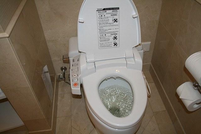 Japanese Bathrooms - Japanese Toilet