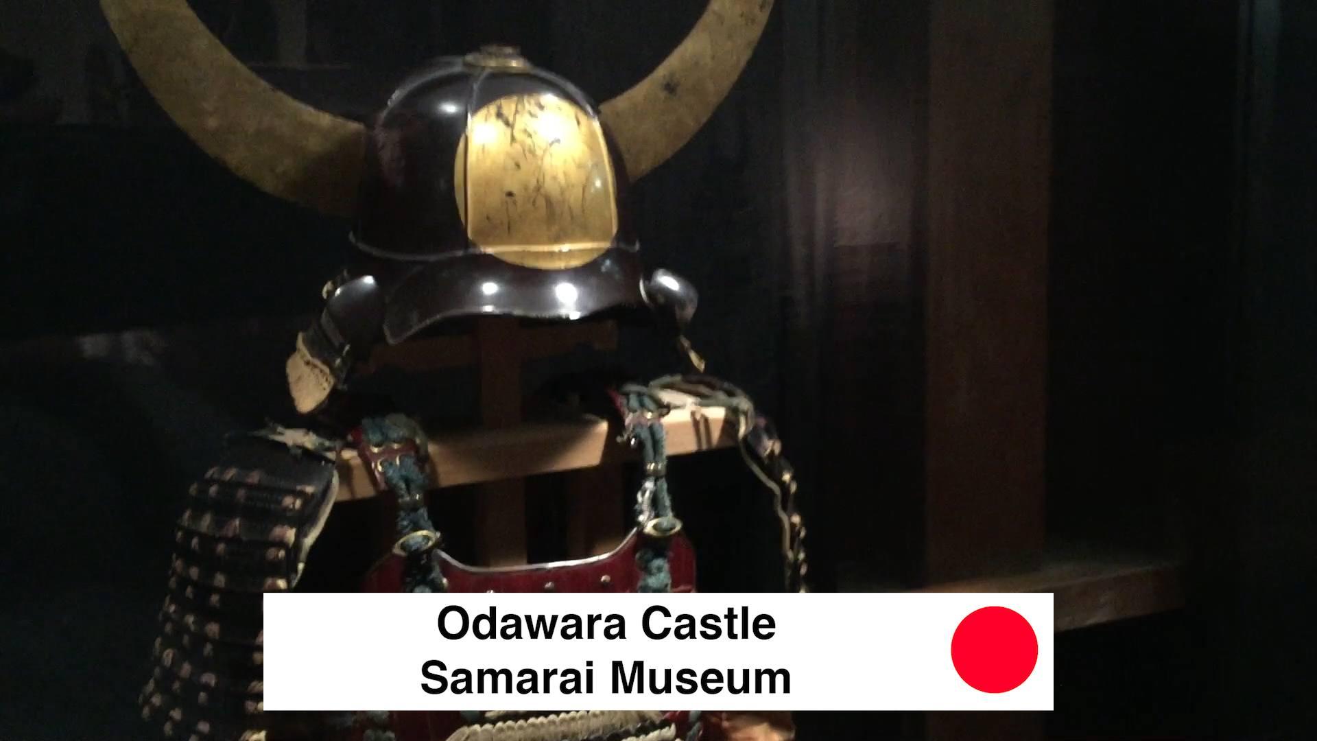 Odawara Castle Samurai Museum - Odawara Castle Japan Guide Review Video - 9 Reasons To See Odawara Castle Kanagawa Japan 🇯🇵 🏯 🌸