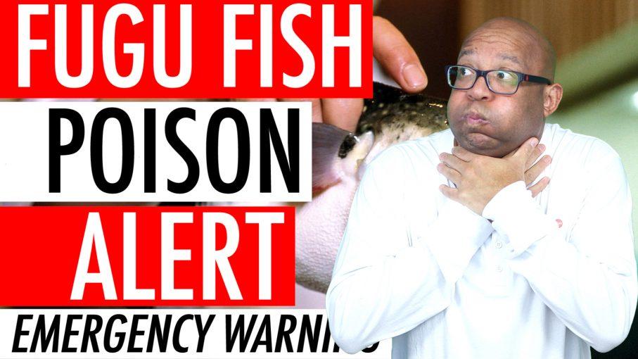 Fugu Puffer Fish Poison Alert 2018 - Deadly Blowfish Recall Activates Japan Emergency Warning 🇯🇵 🐡 ⚠️